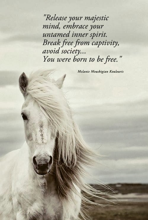 quotes to be free - Zohre.horizonconsulting.co