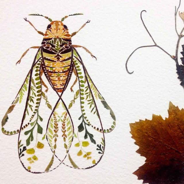 رسومات من أوراق شجرة السرخس للطبيعة 2