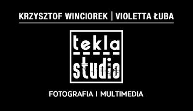Wizytówki dla Tekla Studio, identyfikacja wizualna, projekt graficzny