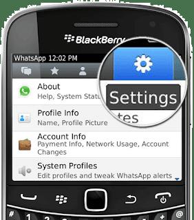 Delete WhatsApp on BlackBerry