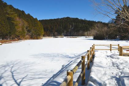 段戸湖全面結氷