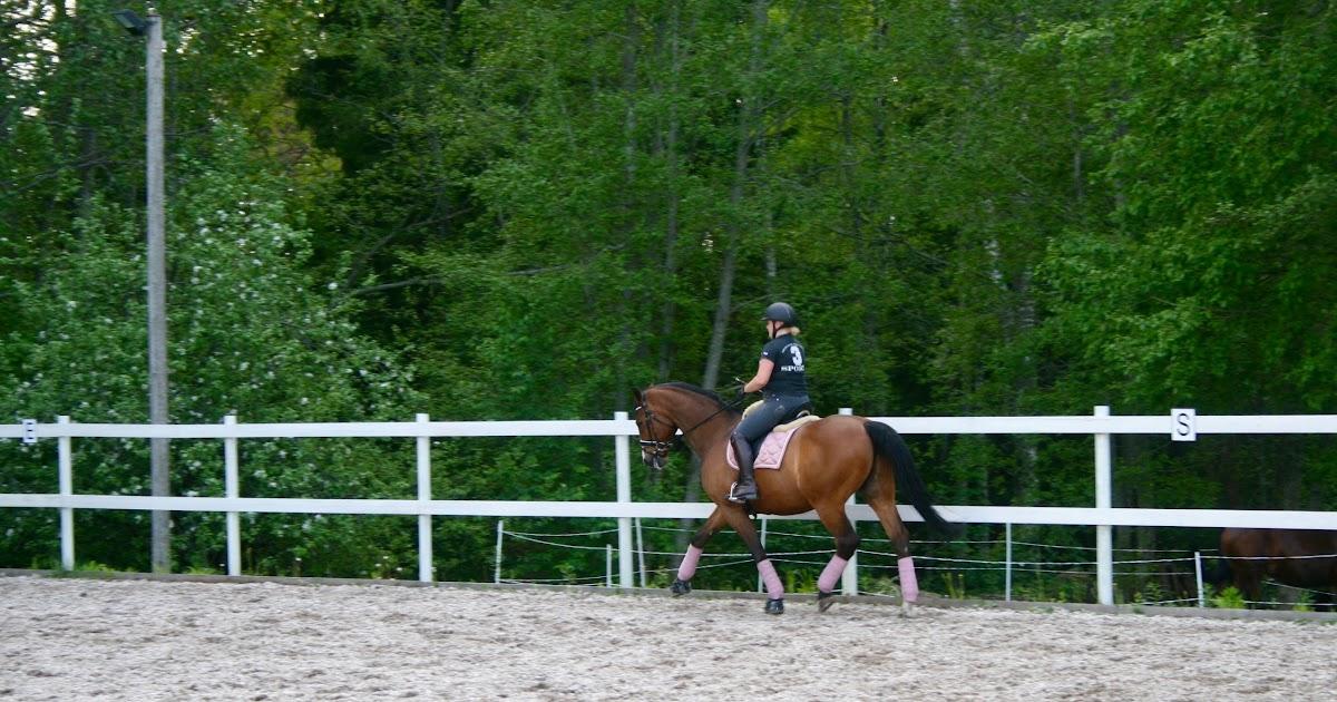 Rocking E Cowgirl 10 Questions June blog hop