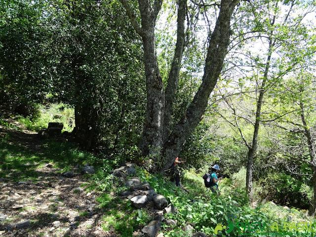 Ruta al Mustallar: Saliendo del Refugio de Acebalín para Burbia
