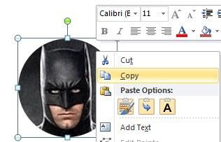 copy the image