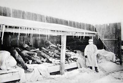 Eksprimen NAZI terhadap manusia
