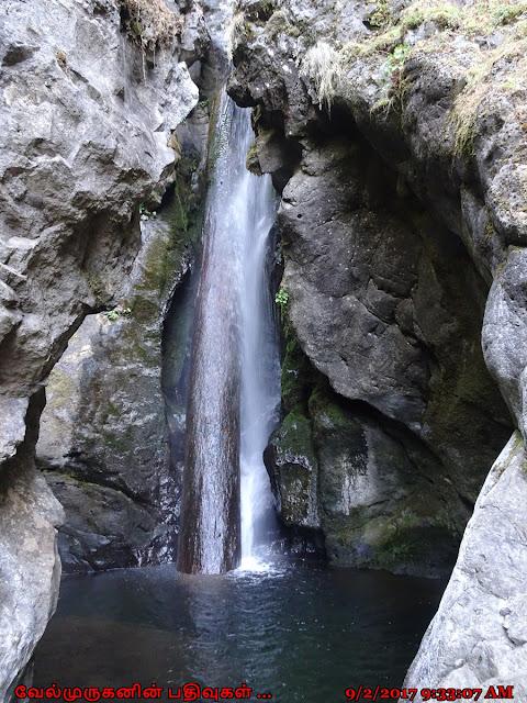 Rodney Falls Washington