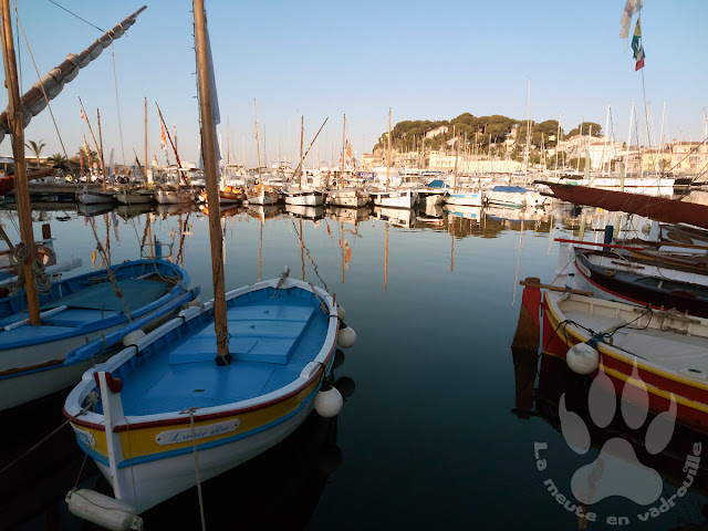 France-PACA-Var-Sanary-sur-mer-port