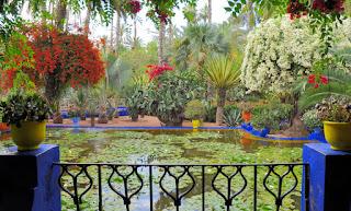 Jardin Majorelle haverne i Marrakech, Marokko