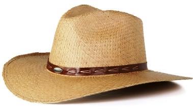 El sombrero debe ser un poco pesado para que no sea tumbado por la brisa o  por los saltos del caballo. El orgullo del llanero es querer llevar un buen  ... 2ee5b8a183a