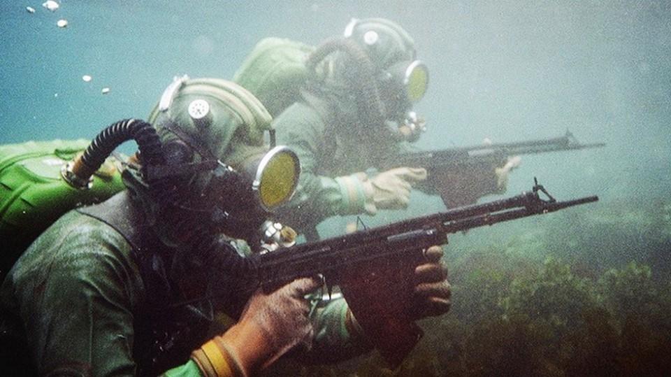 интересно фото подводного бойца яркий