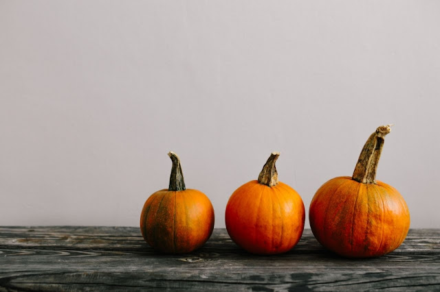 fotografias-stock-gratuitas-halloween