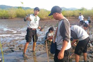 Tanam mangrove tim BPSPL Denpasar