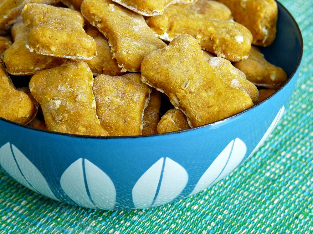 Easy to Make Dog Treat Recipe + Ingredient Suggestions