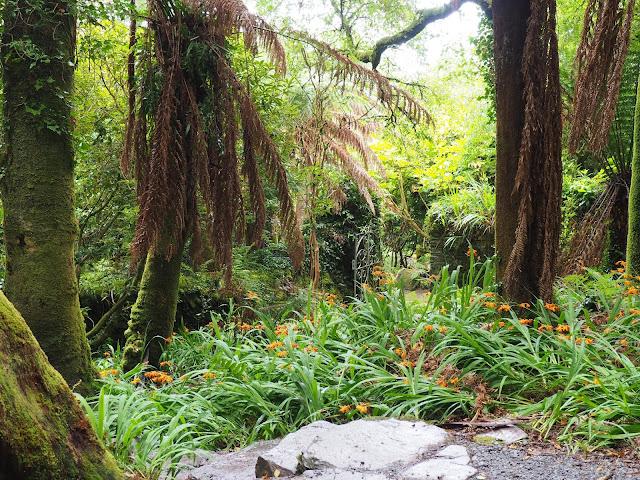 Kells Bay Garden, portti, puutarha
