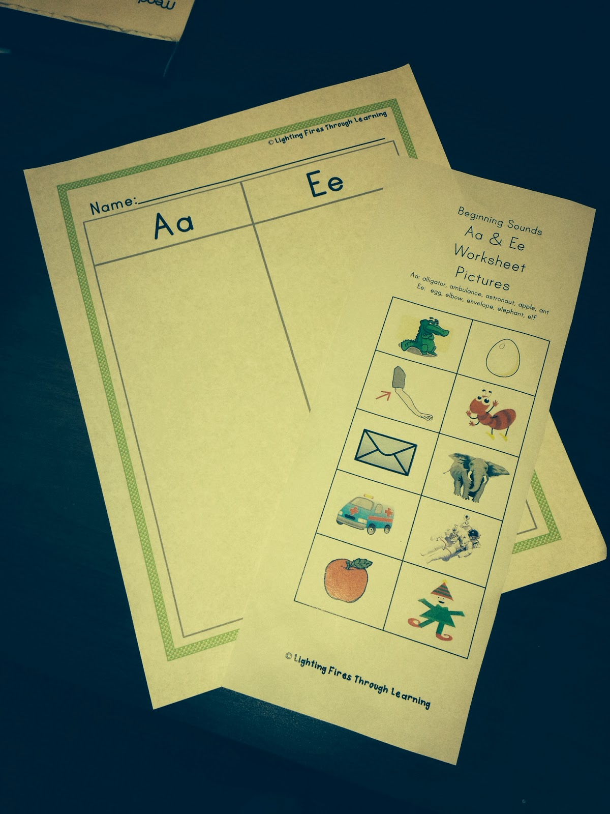 Lighting Fires Of Learning Short Vowel Cut And Paste Activity Ccess