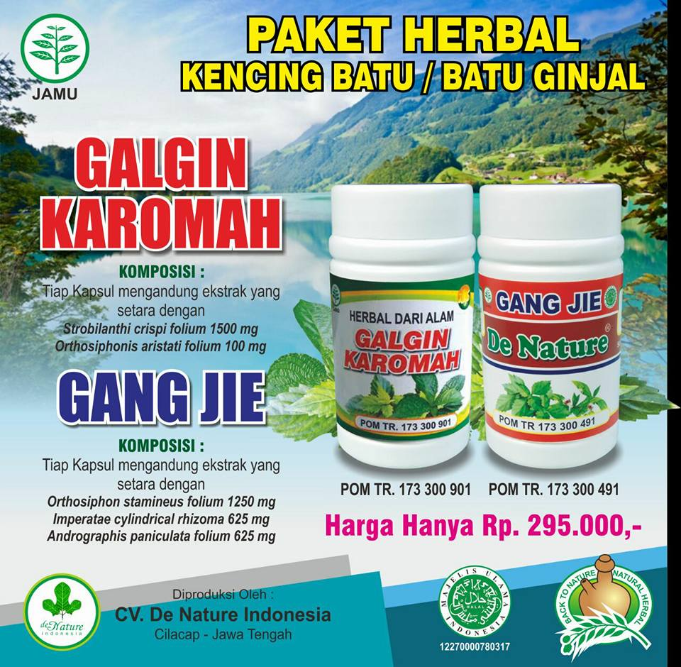 Nama obat untuk penyakit ginjal yang alami