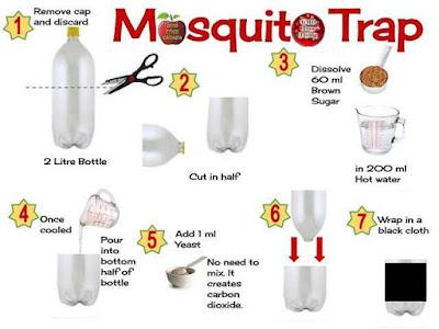 DIY: Homemade Mosquito Trap