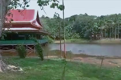 Wisata Danau Betung Pelalawan Riau