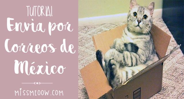Envia paquetes por Correos de México