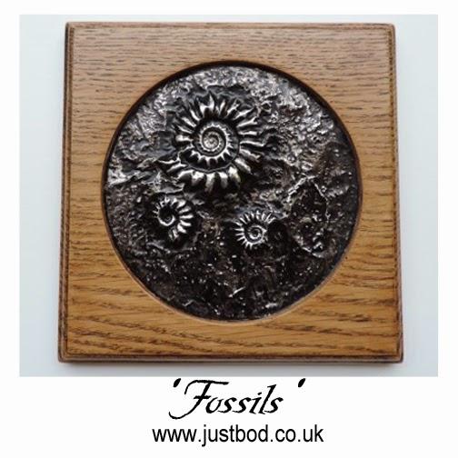 Fossils ammonite wall plaque