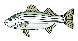 Fish Object