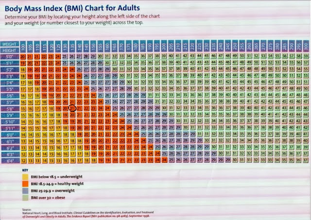 100+ Morbid Obesity Bmi Scale – yasminroohi