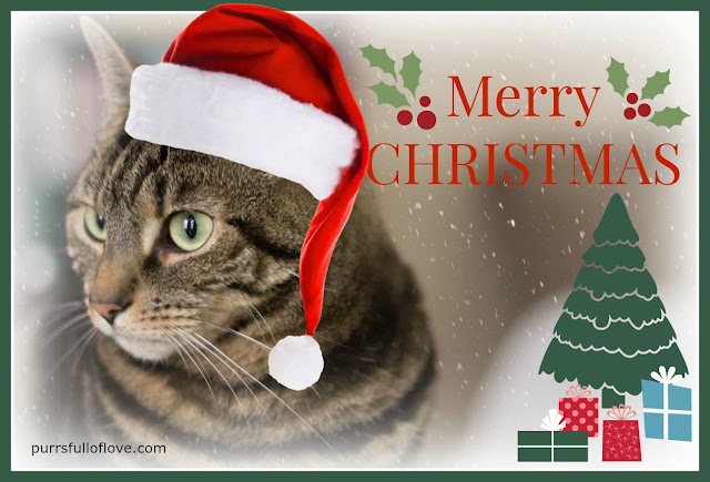 Athena Christmas card