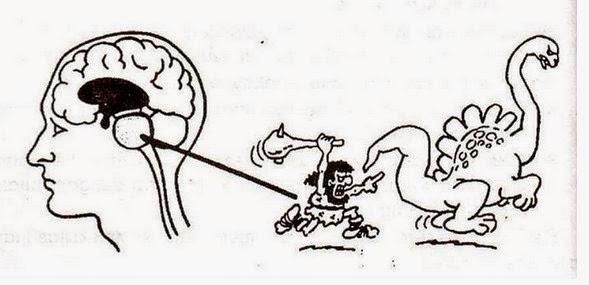 Otak Kadal