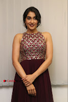 Actress Regina Candra Latest Stills in Maroon Long Dress at Saravanan Irukka Bayamaen Movie Success Meet .COM 0009.jpg