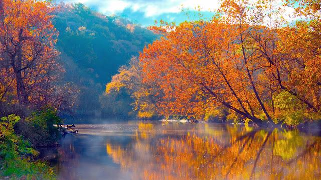 Foto met herfst bomen bij meer