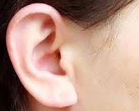 http://sayherbal.blogspot.co.id/2017/01/pengobatan-tradisional-bisul-di-telinga.html