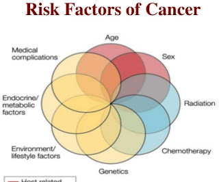 top 6 risk factors contribute cancer