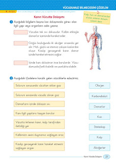 5. Sınıf Sosyal Bilgiler Ders Kitabı Cevapları Anadol Sayfa 21