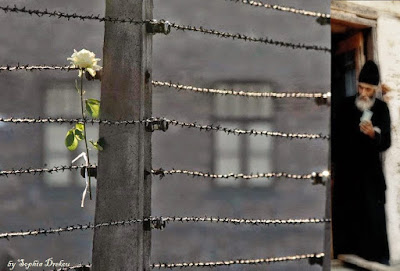 Σοφία Ντρέκου: Φράχτες συρμάτινοι φαντάζουν οι αποστάσεις... Γέροντας Παΐσιος: Η αγάπη καταργεί τις αποστάσεις.