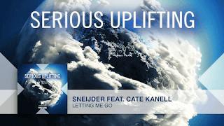 Lyrics Letting Me Go - Sneijder & Cate Kanell