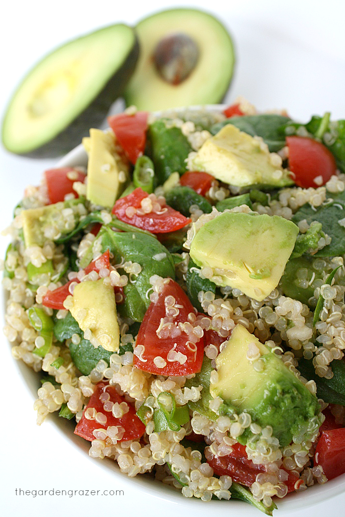 Quinoa Salad With Avocado The Garden Graz...