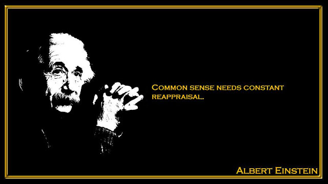 Common sense needs constant reappraisal Albert Einstein quotes