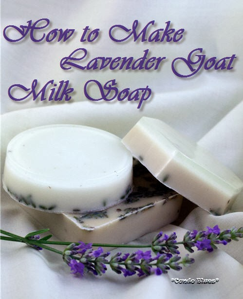 how to make lavender goats milk soap
