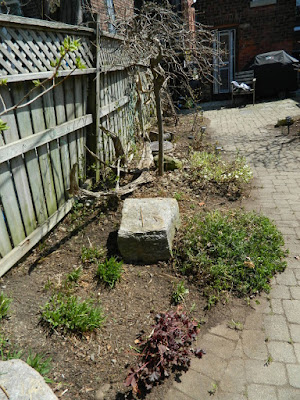 Paul Jung Gardening Services a Toronto Gardening Company Parkdale Spring Garden Cleanup After