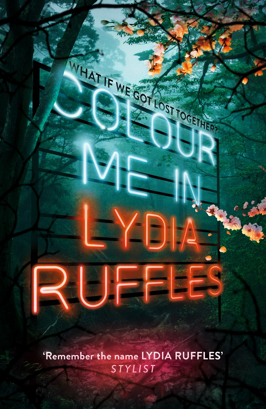 Colour Me In by Lydia Ruffles
