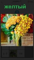 много больших желтых цветков растет и имеются плоды
