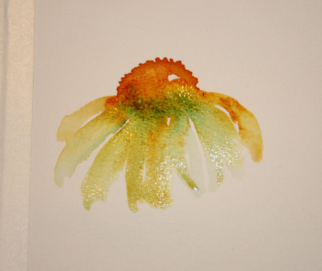 Vickie S Sketchbook Coneflowers Wet In Wet And The