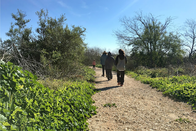Bird Watching & Nature Hike at Mitchell Lake Audubon Center with Latino Outdoors