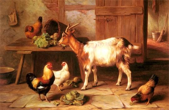 tranh động vật