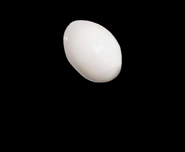 Mel Kobayashi egg recipe Bag and a Beret Nov 2018