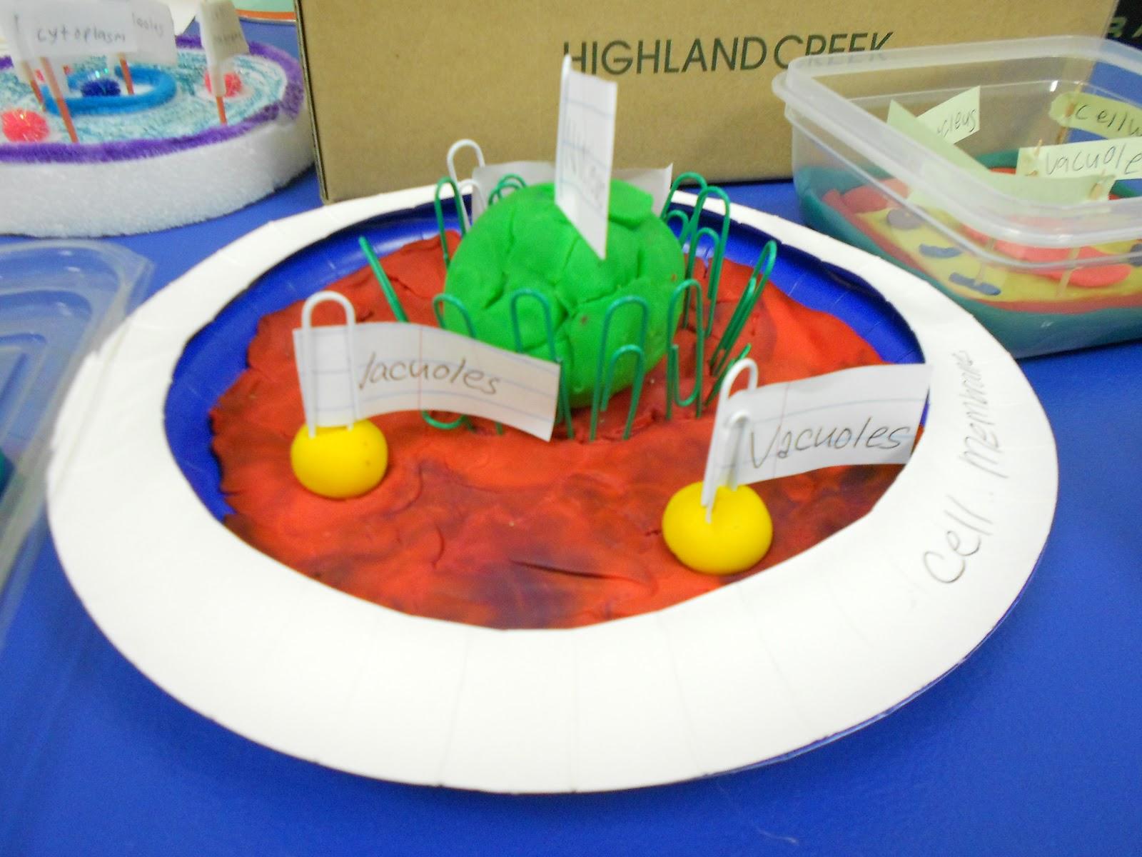Mrs Mcdonald39s 4th Grade Make A Cell Model Project