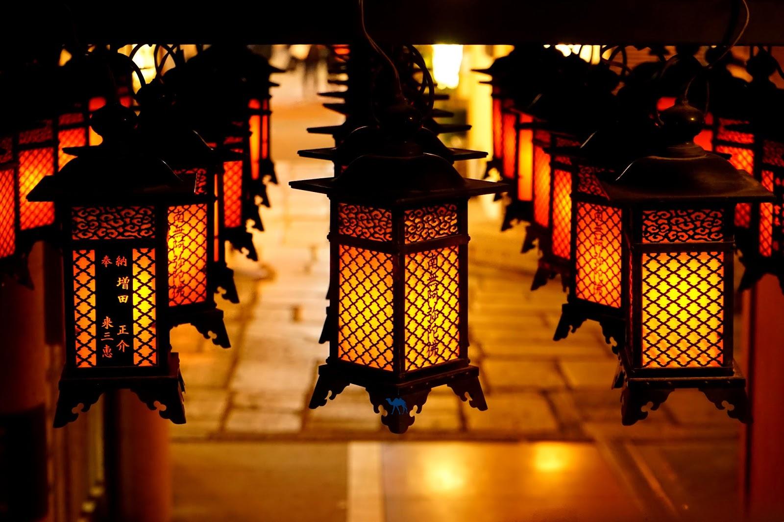 Le Chameau Bleu - Lampions du temple Hôzen-Ji quartier Dotonbori