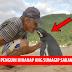 Isang Penguin ang nagawang Lumangoy 8,000 Kilometro Taon-taon para makita ang lalaking Sumagip ng buhay niya!
