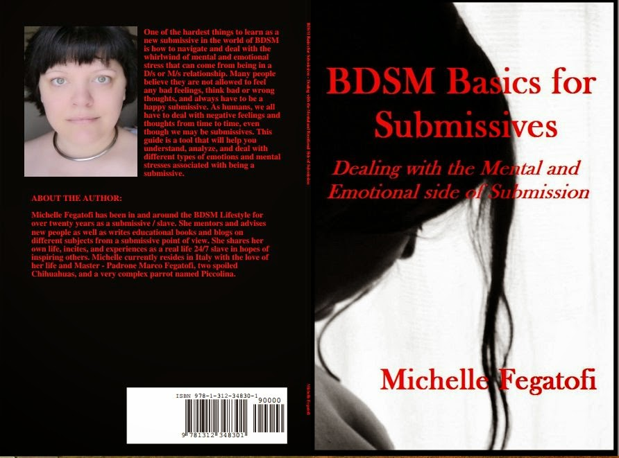 BDSM Basics for Submissives - non fiction educational book cover back