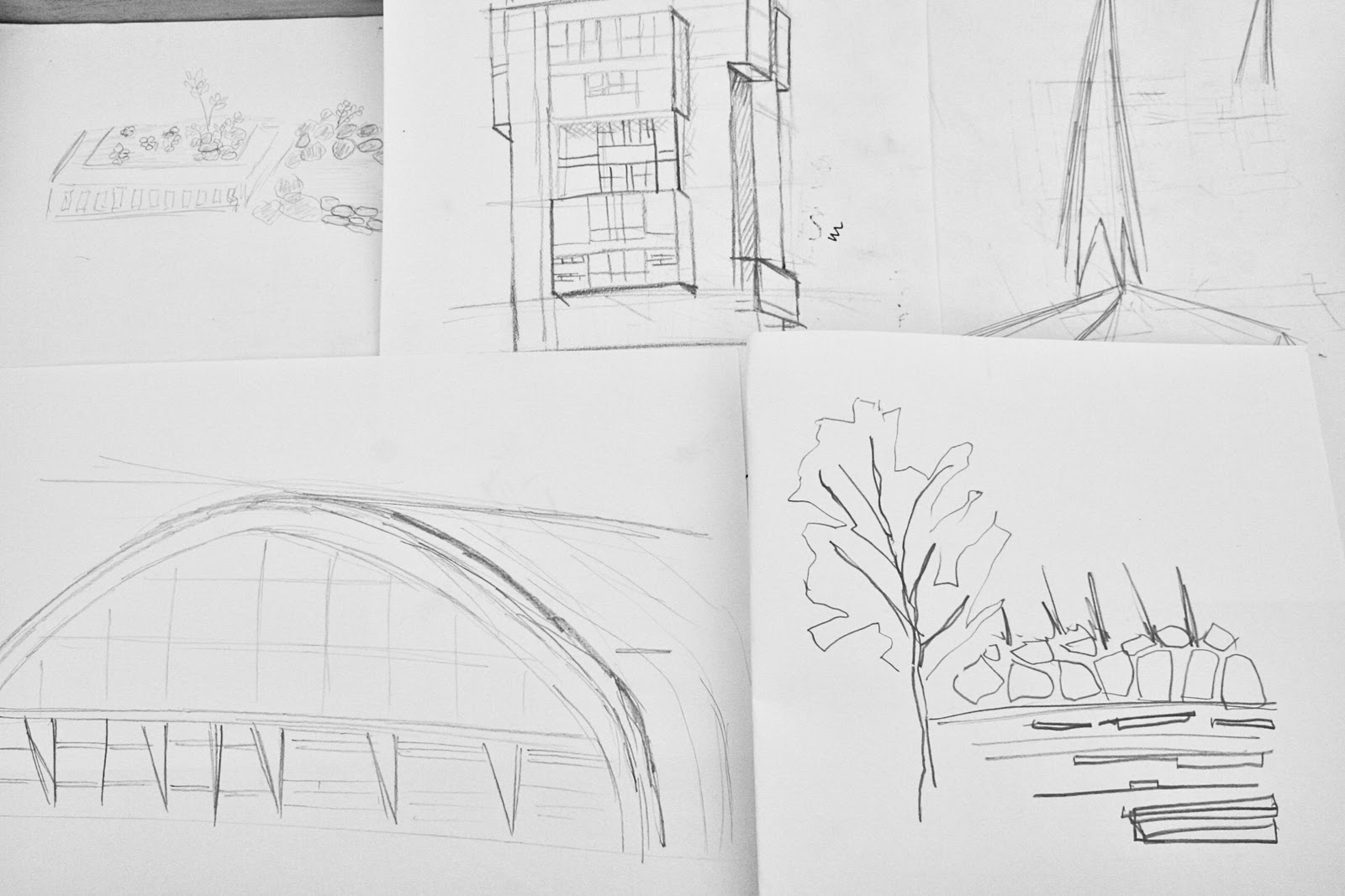 Back To Books Some Drawings From Tea With A View